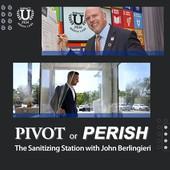 Pivot or Perish