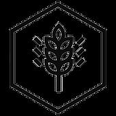 Harvest Point Church Podcast
