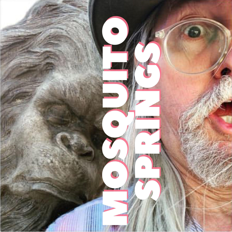Mosquito Springs