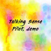 Talking Sense Pilot, demo
